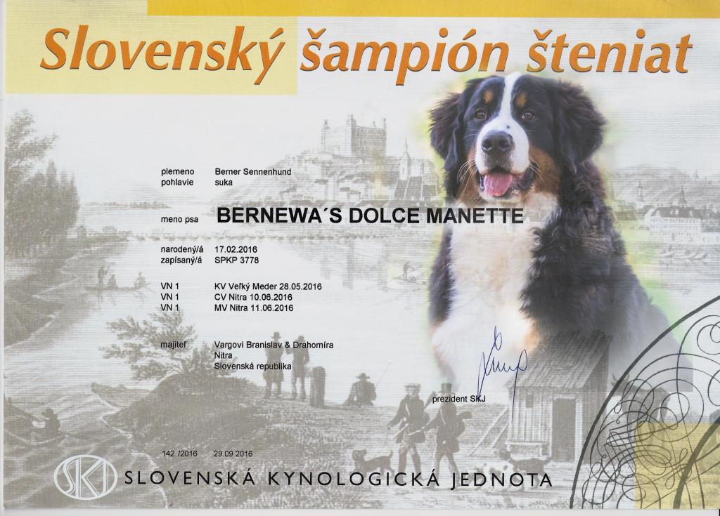 Manette Slovenský šampión šteniat