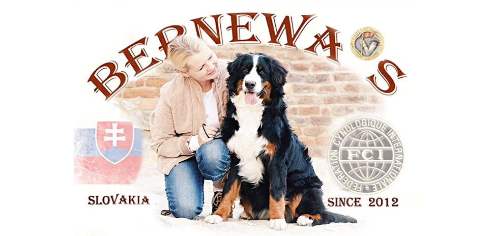 BERNEWA´S NEWS  BLOG